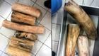 Ngà voi giả được làm bằng gỗ để đánh tráo vào kho tang vật.