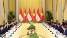 Chủ tịch nước Trần Đại Quang hội đàm với Tổng thống Indonesia Joko Widodo - Ảnh: TTXVN