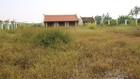 Khuôn viên khu nhà đón tiếp có nơi cỏ cao cả mét.