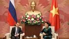 Chủ tịch Quốc hội Nguyễn Thị Kim Ngân và Thủ tướng Chính phủ Liên bang Nga D.A. Medvedev - Ảnh: VGP