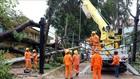 Công nhân điện lực Bà Rịa - Vũng Tàu khẩn trương khắc phục lưới điện bị hỏng do bão số 9. Ảnh:TTXVN