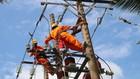 Điện lực miền Nam tăng cường chăm sóc khách hàng mùa khô