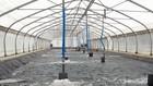 Tích hợp hệ thống nuôi trồng thủy sản và năng lượng tái tạo