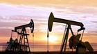 Thị trường dầu mỏ châu Á đi lên. Ảnh: reuters