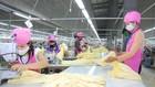 Hàng hóa Việt Nam có nhiều cơ hội thâm nhập 55 thị trường có FTA