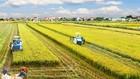 Chính phủ điều chỉnh quy hoạch sử dụng đất tỉnh Bắc Ninh