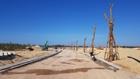 Phát Đạt đấu giá thành công gần 46ha đất tại TP Quy Nhơn