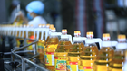 Giá dầu liên tục giảm sâu ảnh hưởng đến kết quả kinh doanh của Tường An.