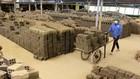 Nhà máy gạch Tuynel Phổ Phong- một trong những nhà máy sản xuất gạch quy mô lớn của Quảng Ngãi đi đầu trong việc cổ phần hóa. Ảnh: TTXVN
