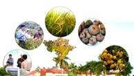 Nâng cao giá trị của ngành tài nguyên và môi trường trong nền kinh tế quốc dân