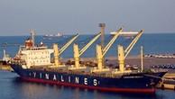 Đấu giá tàu Vinalines Fortuna