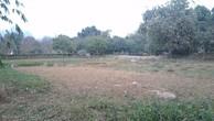 Ngày 6/9/2018, đấu giá quyền sử dụng đất, quyền sở hữu nhà ở và TSKGLVĐ tại huyện Lương Sơn (Hòa Bình) và Chương Mỹ (Hà Nội)