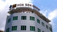 VCSC: Lãi ròng Hoa Sen ước tính giảm 59% trong 2018, khó phục hồi lợi nhuận