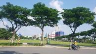 Đà Nẵng: Báo cáo Thủ tướng vụ trúng đấu giá 650 tỷ không được nhận đất