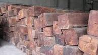 Ngày 20/12/2018, đấu giá 25,481 m3 gỗ xẻ hộp các loại tại tỉnh Khánh Hòa