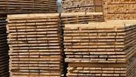 Ngày 26/12/2018, đấu giá 110 hộp gỗ xẻ nhóm III, V, VI tại tỉnh Bắc Kạn