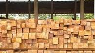 Ngày 28/12/2018, đấu giá 9,675 m3 gỗ xẻ hộp các loại tại tỉnh Khánh Hòa