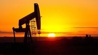 Giá dầu tiếp tục sụt giảm, có thể còn 20 USD/thùng