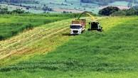 Thu hút đầu tư vào nông nghiệp Việt Nam