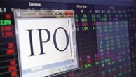 """Tài chính """"be bét"""", Natraco vẫn nỗ lực IPO"""