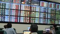 Săn cổ phiếu sắp IPO, cơ hội và rủi ro