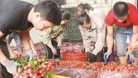Xuất khẩu rau quả cả năm nay dự kiến đạt 4,5-4,7 tỷ USD. Ảnh: Uyển Như.