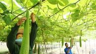 Phá rào cản, dồn lực đầu tư vào nông nghiệp