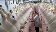 """Nhọc nhằn """"săn"""" giấy phép xuất khẩu thịt lợn"""