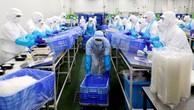 Công nhân đóng gói salad trong một nhà máy chế biến thực phẩm ở Naroshino, Nhật Bản, tháng 4/2018 - Ảnh: Reuters.