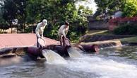 Gói thầu xây lắp thủy lợi tại Vĩnh Phúc: BMT bác đơn tố thông thầu
