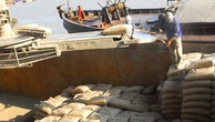 Tái cơ cấu Xi măng Hạ Long và Xi măng Sông Thao: Bước đầu có lãi