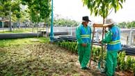 Kinh phí cho trồng, chăm sóc, cắt tỉa cây xanh của các đô thị là rất lớn, đặc biệt là TP.HCM. Ảnh: Lê Tiên
