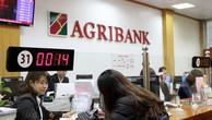 Chi phí dự phòng của Agribank tăng mạnh