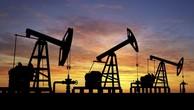 Đang có nhiều yếu tố trái chiều tác động lên giá dầu.