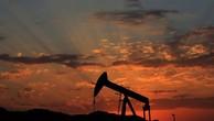 Sau khi tăng mạnh trong mùa hè, giá dầu thế giới đang sụt sâu trở lại.