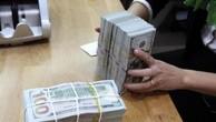 Tỷ giá đồng USD hôm nay 23/11 ổn định