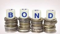 Thị trường trái phiếu Việt Nam đã đạt 53 tỉ USD