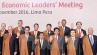 APEC 2017 là trọng tâm đối ngoại của Việt Nam đến năm 2020