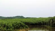 Đấu giá quyền sử dụng đất tại huyện Phú Lộc, Thừa Thiên Huế