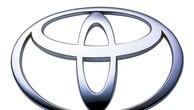Ngày 01/02/2019, đấu giá 02 xe ô tô Toyota Camry đã qua sử dụng tại TPHCM