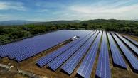 Liên danh 2 nhà thầu trúng gói thầu EPC điện mặt trời hơn 1.015 tỷ đồng