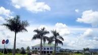Đấu giá tài sản của Công ty Đại Việt tại Đắk Nông