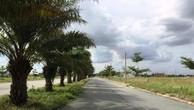 TPHCM chỉ đạo tạm ngưng đấu giá và thanh tra Dự án KCN Phong Phú