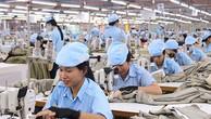 May Phan Thiết bán 'cổ phiếu ưu đãi' cho lãnh đạo gấp chục lần giá thị trường