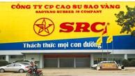 Ngày 4/6/2019, đấu giá 4.209.800 cổ phần của Công ty CP Cao su Sao Vàng
