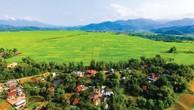 Ngày 8/6/2019, đấu giá quyền sử dụng đất tại huyện Điện Biên, tỉnh Điện Biên