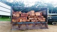 Phương tiện và gỗ tang vật. Ảnh: Công an Kon Tum