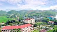 Ngày 10/7/2019, đấu giá quyền sử dụng đất tại huyện Yên Sơn, tỉnh Tuyên Quang