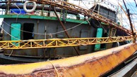 Bình Định đề nghị điều tra các cơ sở đóng tàu