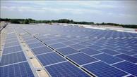 Tập đoàn Trung Quốc muốn làm điện mặt trời tại Bình Thuận